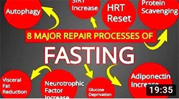 Fasting Effects: 8 Major Repair Processes of Fasting