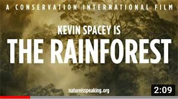 "Nature Is Speaking presenta ""Foresta Pluviale"" [sub ITA by AnimalVillage.it]"