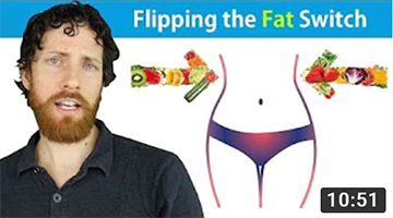 The Science of Vegan Fat Loss