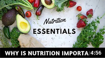 WHY IS NUTRITION IMPORTANT? 🥑 Nutrition essentials