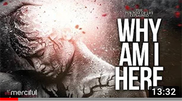Why Am I Here – The Purpose of Life